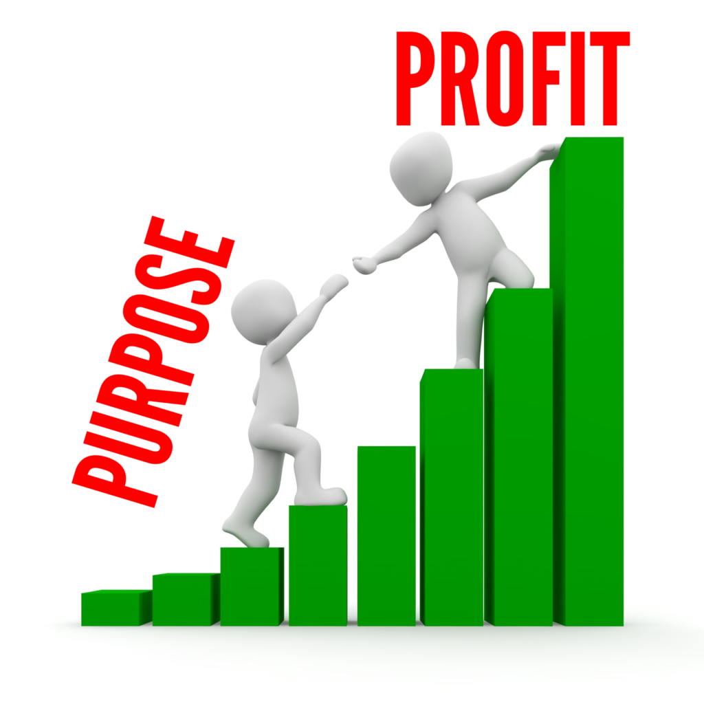 Purpose to Profit